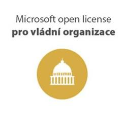 MS Office 2019 Government OLP 1License NoLevel (021-10618)